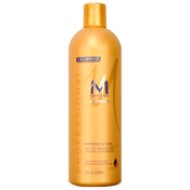 Motions Professional Active Moisutre Lavish Shampoo 16oz